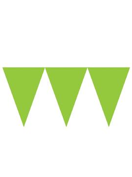 Banderín de Papel Verde Kiwi 4,5 metros