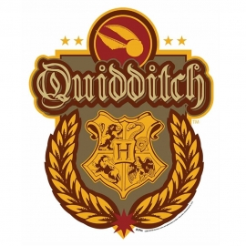 Decoración de Pared Escudo Quidditch Harry Potter 61cm​