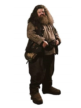 Decoración Photocall Hagrid Harry Potter 195 cm