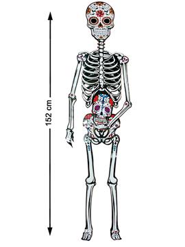 Figura de Cartón Articulado Esqueleto 152 cm