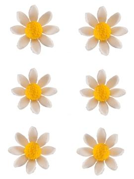 Set de 30 Margaritas Blancas de Azúcar 25 mm